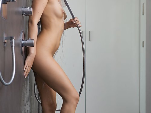 Brunette with big areolas fucked in the shower